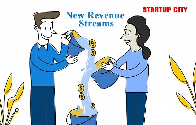 New Revenue Streams To Get More Profit Out of Your Business