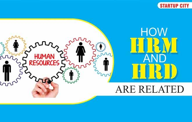 How HRM And HRD Are Related To Each Other Explains And Also Comments On Their Evolution?