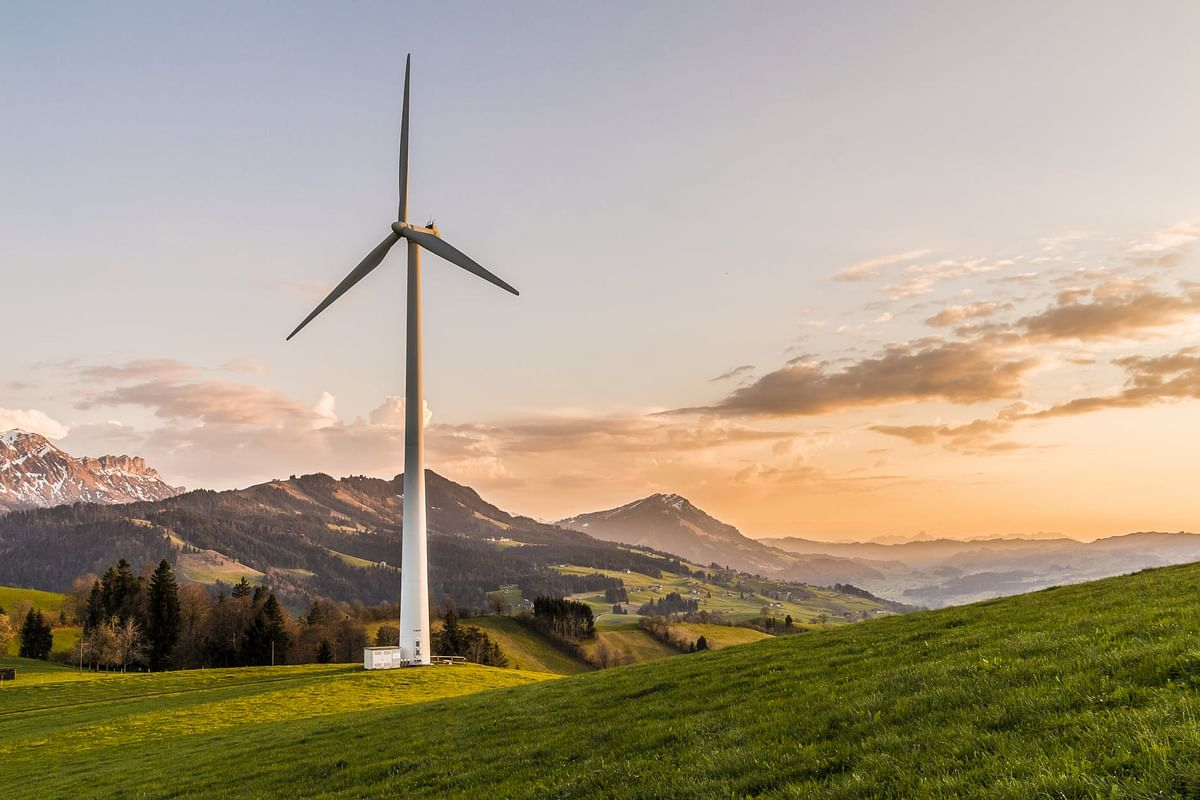 Vestas Secures 27 MW Auction Win in Poland