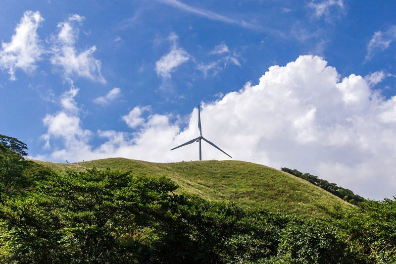 Green Transition of Poland's Electricity Producer Tauron