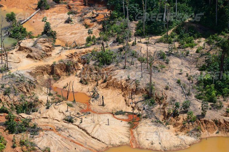 Indigenous Groups Blast Plan to Legalize Wildcat Mining in Amazon