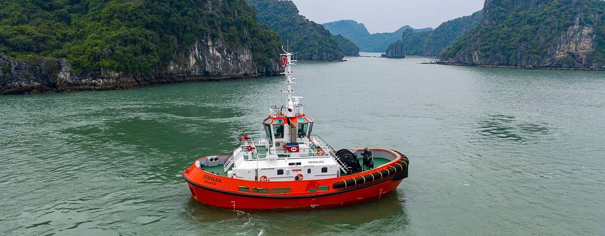 Damen Delivers RSD Tug 2513 to Tug Malta