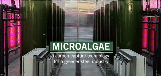 Microalgae Based Application for Eco Friendly Steelmaking Process