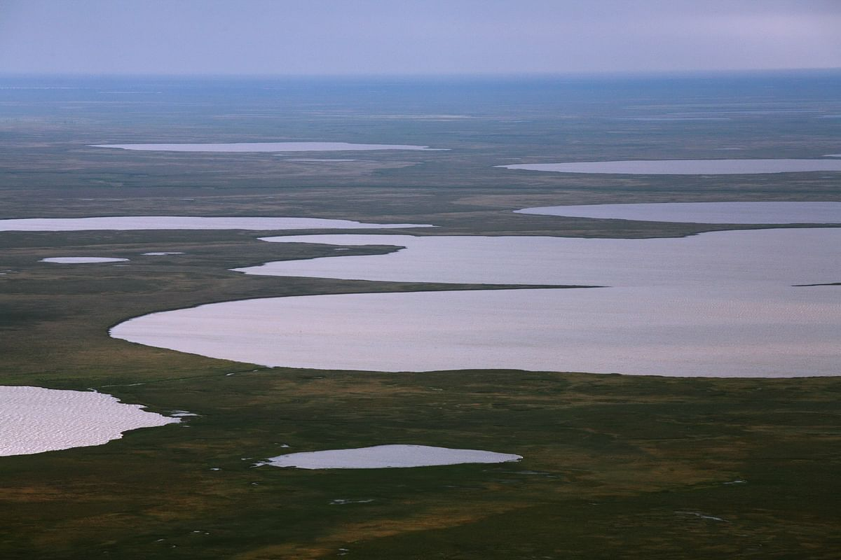 NOVATEK Obtains North-Gydanskiy License Area