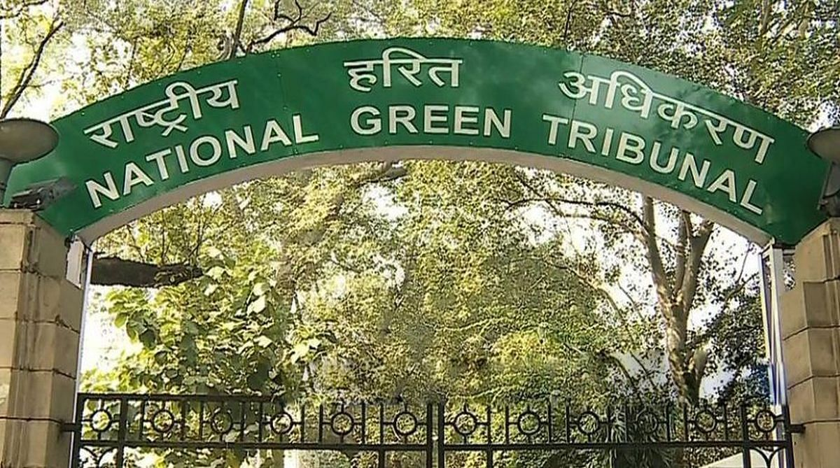 NGT Panel to Probe Environment Violation by JSW Steel in Raigarh