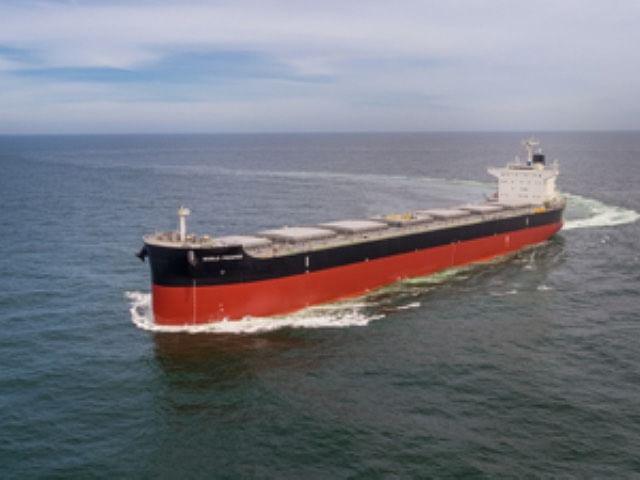 Bulk Carrier WORLD PROSPERDelivered