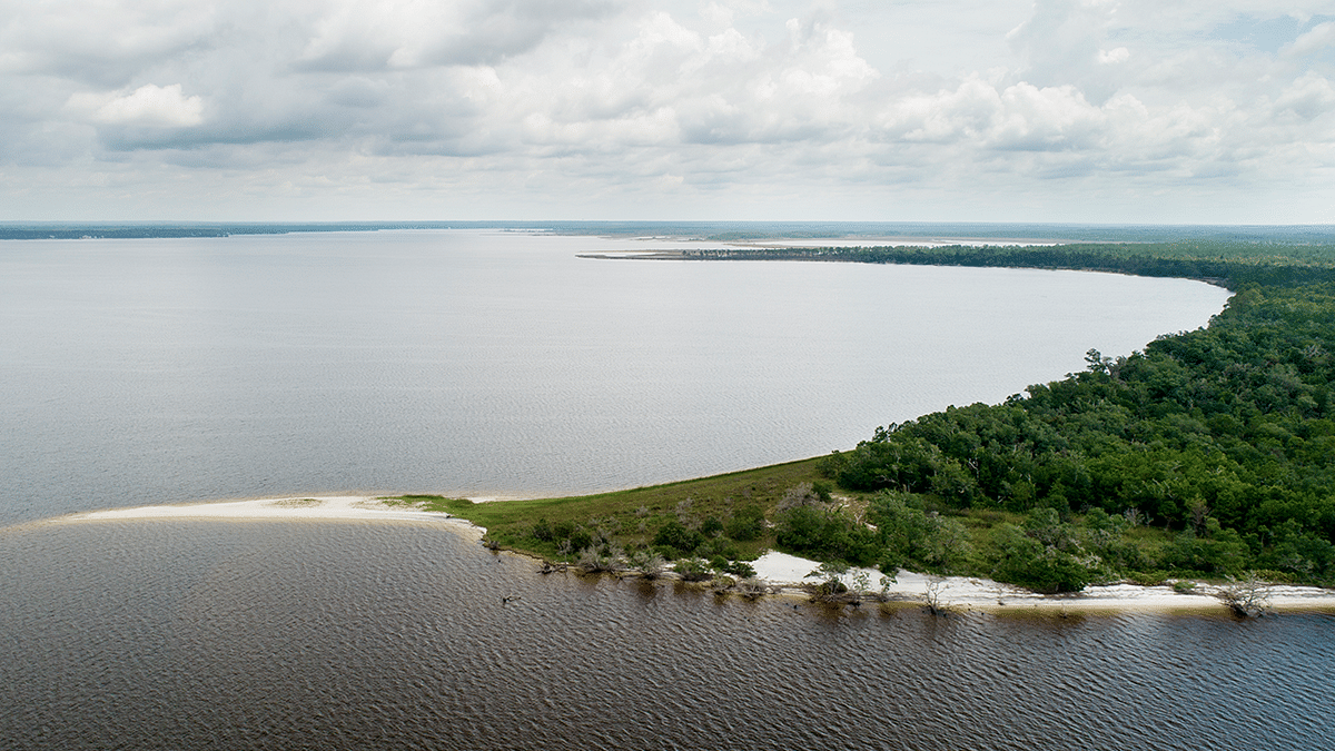 Jacobs to Restore Oyster Reefs along Gulf Coast