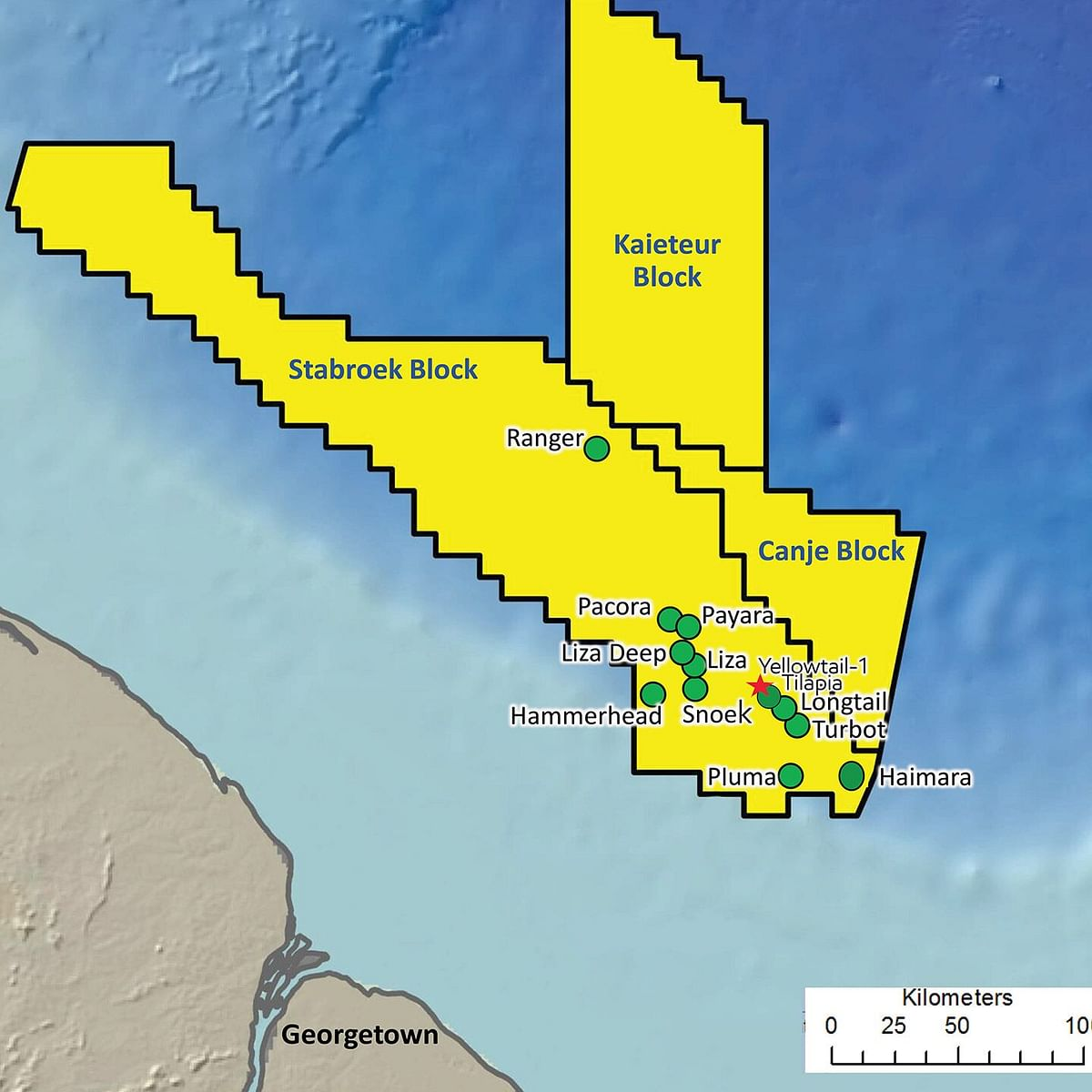 ExxonMobil Discovers Oil at Pinktail Offshore Guyana