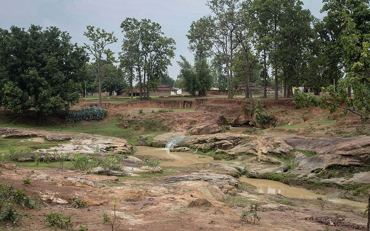 Odisha CM Urged to Cancel Bidding for Mines to Protect Forests