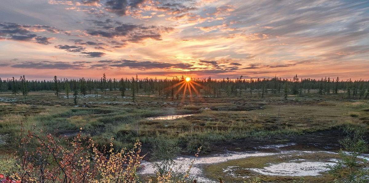 NOVATEK Obtains Arkticheskoye and Neytinskoye Fields