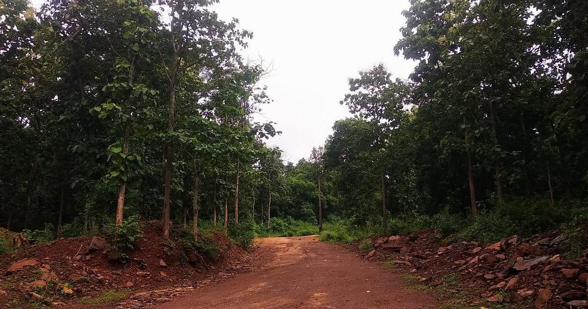 Iron ore Mining is Driving Deforestation in Chhattisgarh