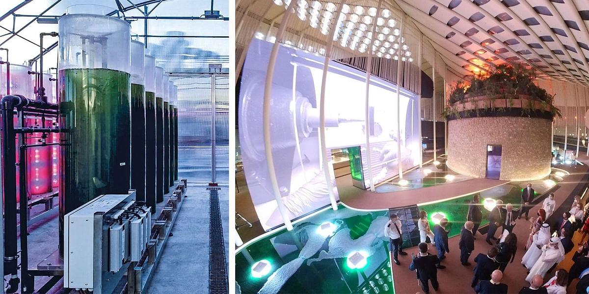 Danieli & Tolo to Develop Microalgae Based CO2 Capture & Reuse