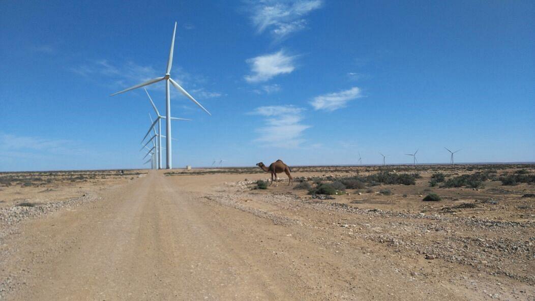 GE Renewable & Nareva to Build Wind Farm in Morocco