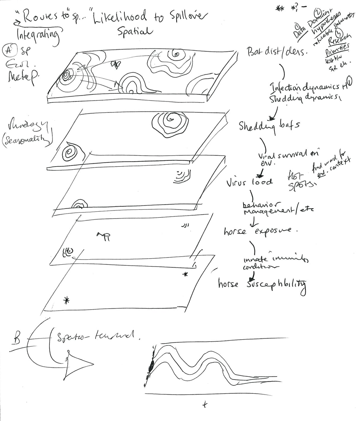 When Raina Plowright began to look at the many factors that influence the spillover potentialof viruses like Hendra and Nipah,she began envisioning the route a virus must take as being punctuated by a series of layers whose holes can open or close to make transmission easier or harder. This is one of her early sketches of that concept.