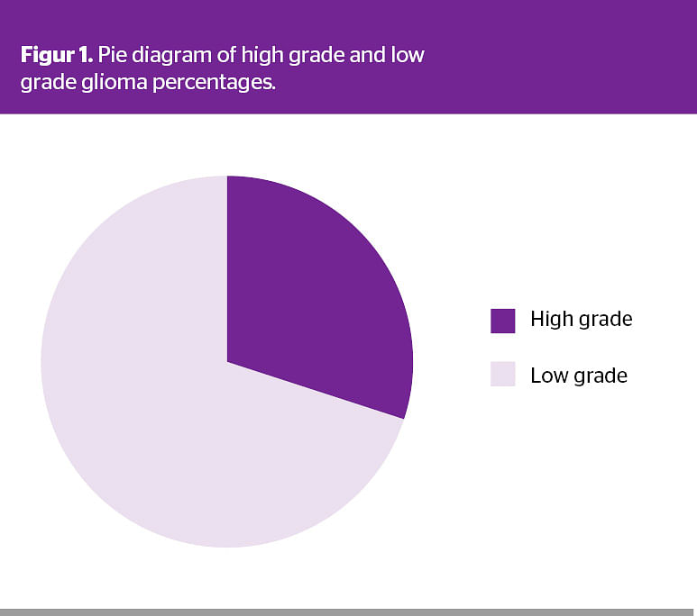 Role of Susceptibility-weighted Imaging in Grading of Gliomas Compared to Perfusion MRI, with Histopathology as the Gold Standard