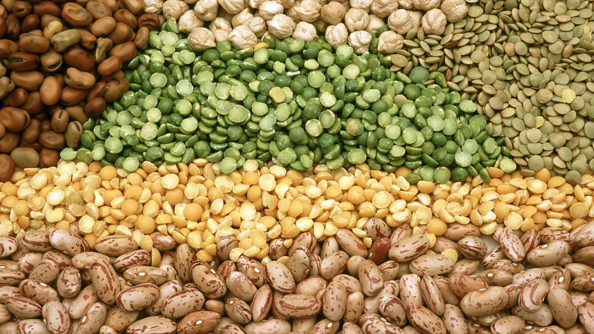Centre to offer pulses at subsidised rates; traders demand import of 'tur' dal