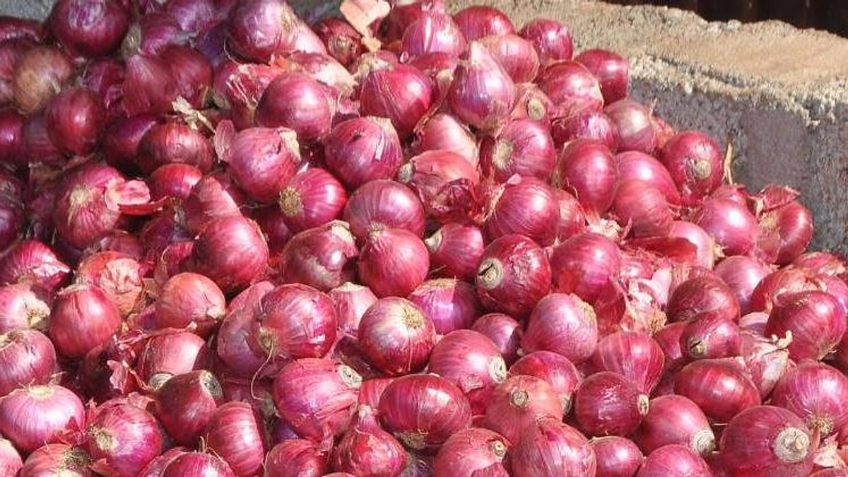 Onion, the newest gem: Two arrested for stealing 550 kg onions