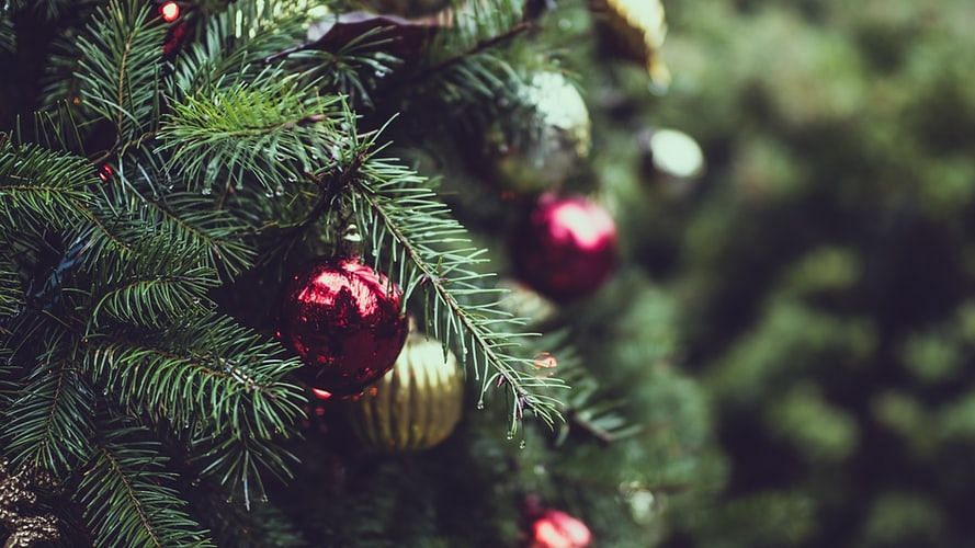 Maharashtra Christmas 2020: Only 50 people permitted in church, 10 in choir allowed