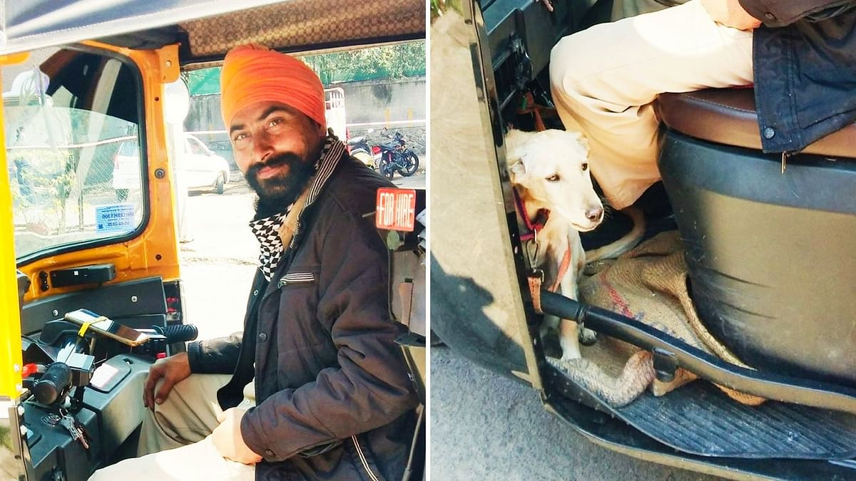 Pune: This auto-rickshaw driver hovers around the city along with his puppy