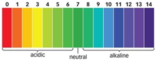 Is pH 5.5 really that important for skin?
