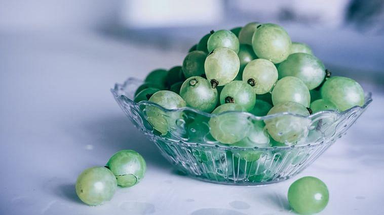 A sour taste: COVID lockdown in Europe hits Maharashtra's grape exports