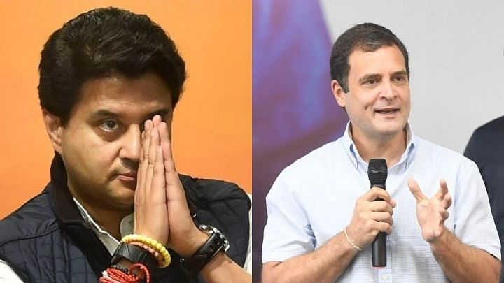 Rahul Gandhi: Jyotiraditya Scindia, a 'backbencher' in BJP; will never become CM