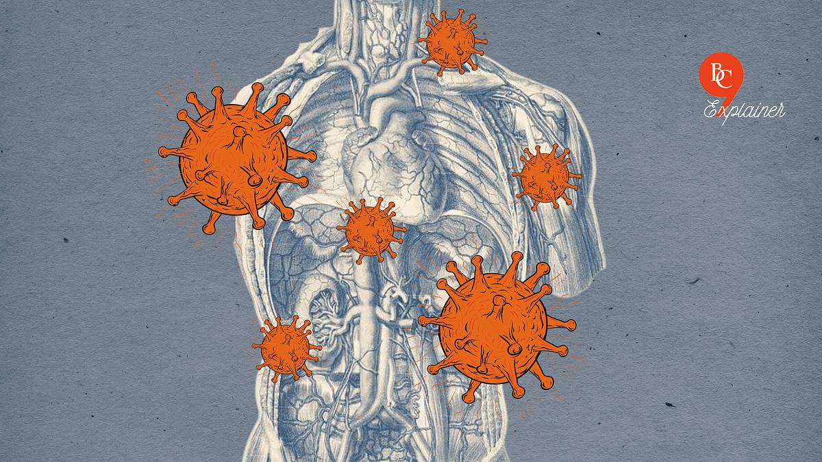 Representative image of vaccination