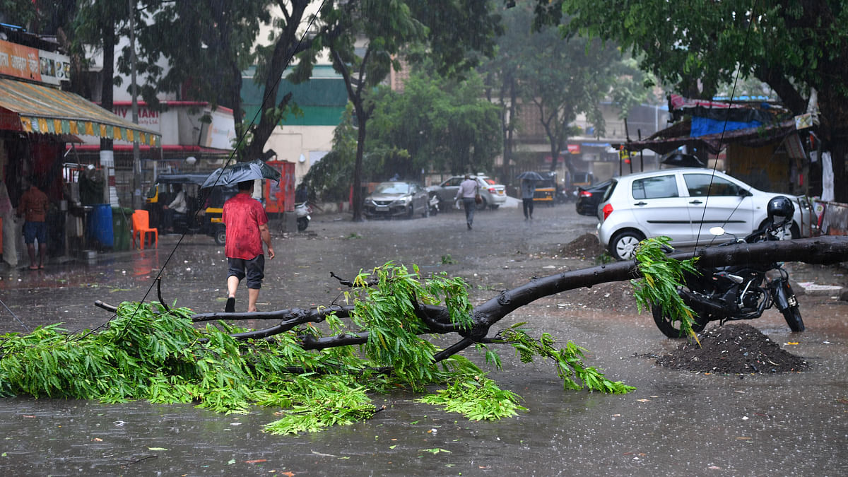 In pics: COVID-hit India witnesses havoc by Cyclone Tauktae