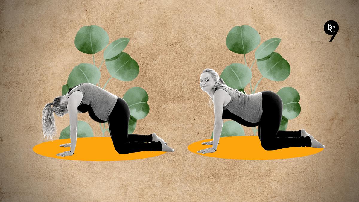 As part of prenatal yoga, one can practice Marjariasana