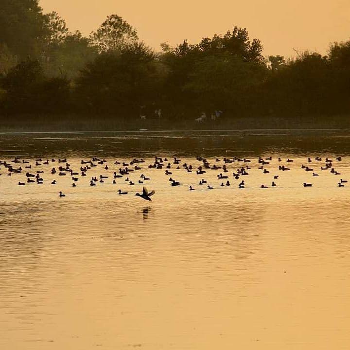 Amravati Lake