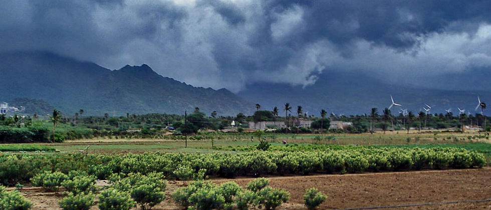 Monsoon may hit Central India between June 11 & 19, says PIK