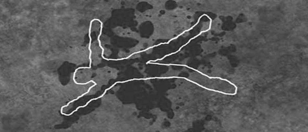 Haryana based TikTok star murdered by rejected lover