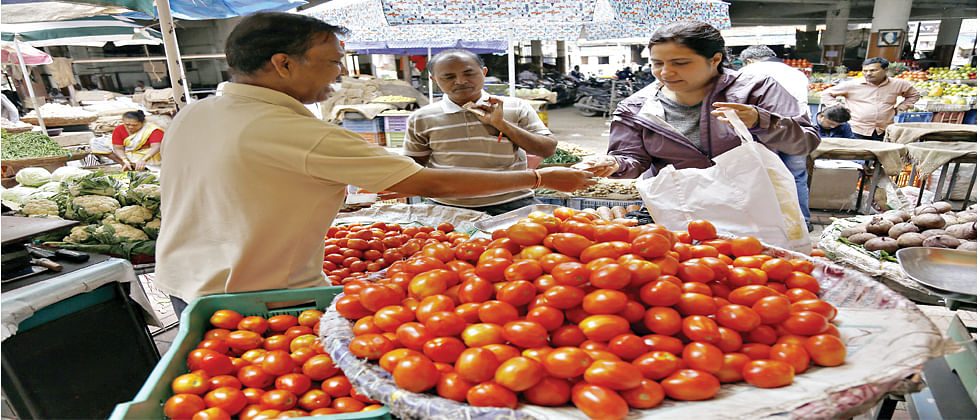 After reaching a high of Rs 150 per kg, Tomatoes' prices drop