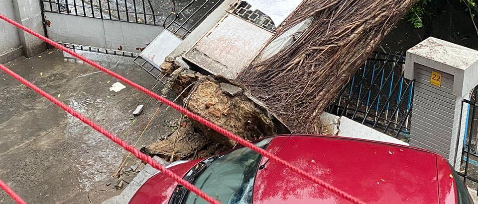 Super Cyclone Amphan slams Bengal: Twitter reactions