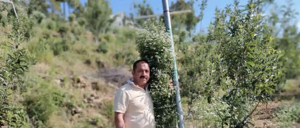 Uttarakhand farmer earns Guinness Book of World Records for tallest coriander plant