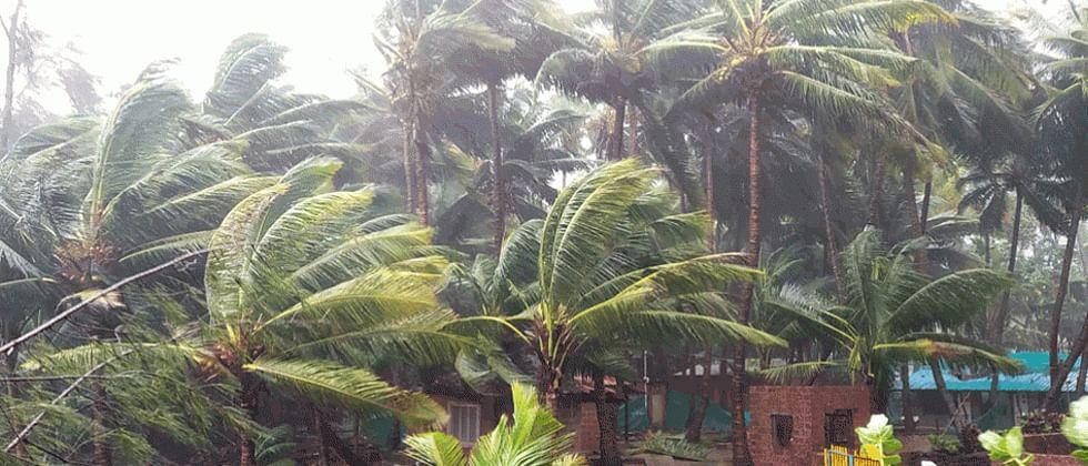 Nisarga Cyclone: Ajit Pawar reviews damage caused in Pune