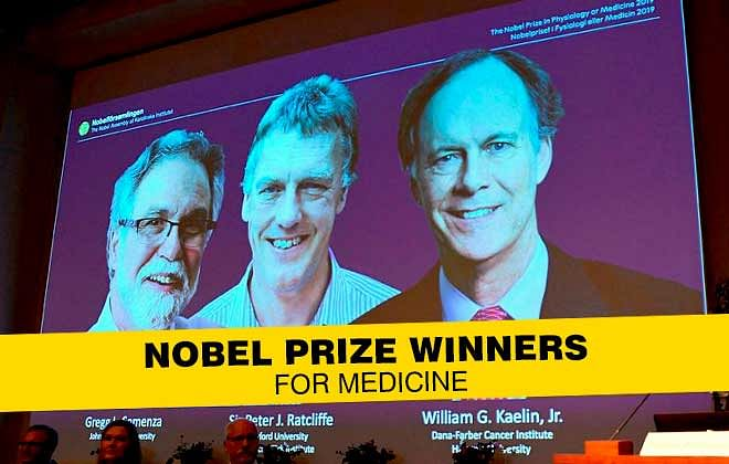 The 2019 Nobel Prize Winners in Medicine