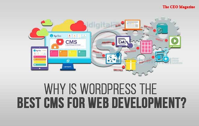 Why Is WordPress The Best CMS For Web Development?