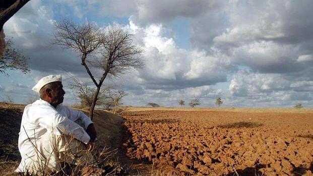 മഹാരാഷ്ട്രയില് ഒരു ദിവസം ജീവനൊടുക്കുന്നത് 11 കര്ഷകര്; മൂന്ന് വര്ഷത്തിനിടെ 12021 കര്ഷകര് ആത്മഹത്യ ചെയ്തെന്ന് ഔദ്യോഗിക കണക്ക്