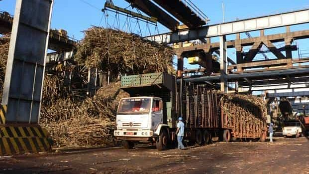 UP Issues COVID-19 Guidelines For Cane Crushing Season