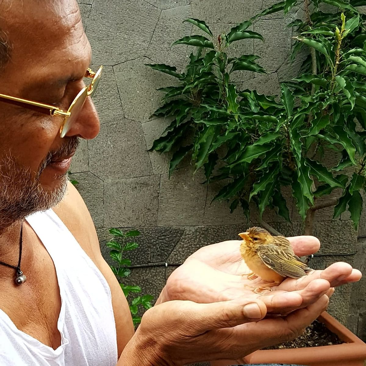 Nana Patekar Shares Cute Picture With Sparrow In Hands