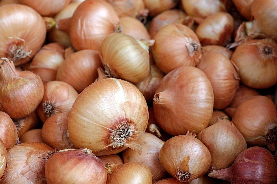 Government Steps In To Moderate Prices And Availability Of Onion