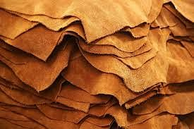 Mega Leather Cluster To Be established On 235 Acres In Ramaipur Village Of Kanpur