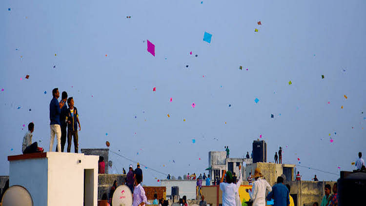 UPMRC Appeals To People Not To Fly Kites Near Metro Corridor On Makar Sankranti