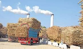 Govt To Dole Out Rs 3500 Crore To Sugar Mills To Meet Marketing Expenses