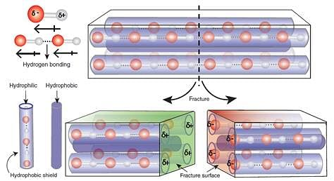 Indian Scientists Discover Materials That Self-Repair Mechanical Damages