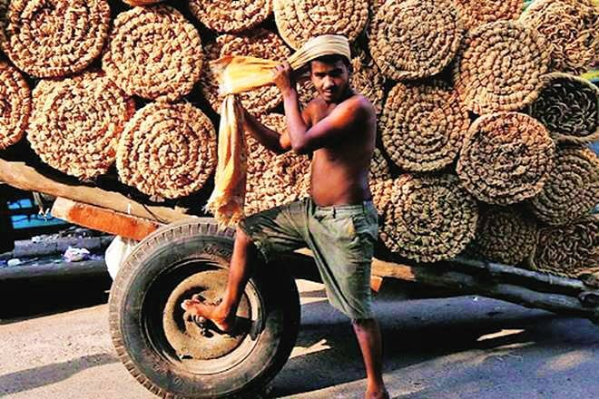 Coir Industry Proliferates, Flourishes In Non-Conventional Regions