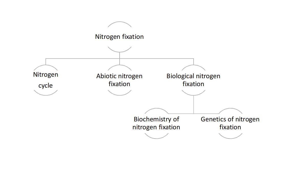 Concept Map-Nitrogen Fixation.