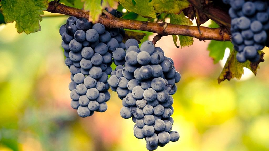 Grapes, or carrots - both are rich in pectin, a soluble fiber that lowers blood cholesterol