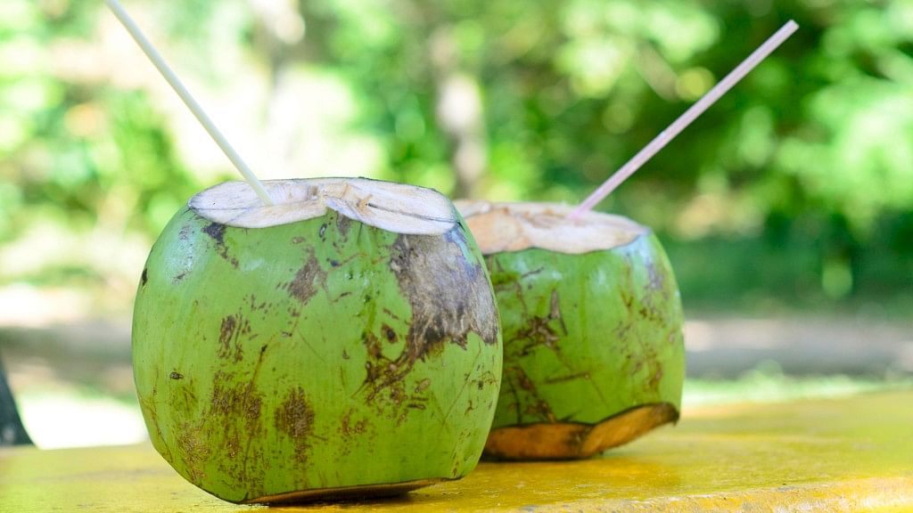 Do You Love Coconut Water? There's More to It Than Meets the Eye